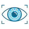 eye Cyber Security Services